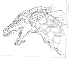 Seawing Sketch by TheLittleWaterDragon.deviantart.com on @DeviantArt
