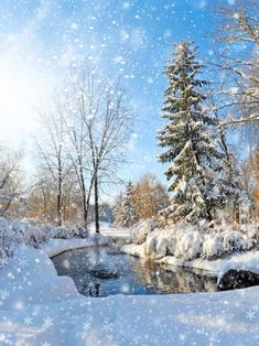 Find More Background Information about Christmas Backdropsnow Forest Pond…