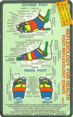Reflexology foot maps