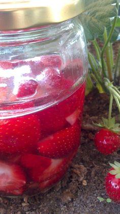 The gastrin: ΛΙΚΕΡ ΦΡΑΟΥΛΑΣ Mason Jars, Strawberry, Fish, Fruit, Drinks, Blog, Crop Protection, Craft, Beverages