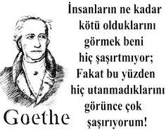 İnsanların ne kadar kötü olduklarını görmek beni hiç şaşırtmıyor; Fakat bu yüzden hiç utanmadıklarını görünce çok şaşırıyorum. Goethe.