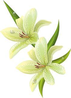 Çiçek Desenli Dekupaj Resimleri