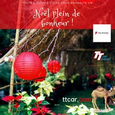 Joyeux Noël, de l'équipe TTCar! #ttcar #ttcartransit #noel #joyeuxnoel #merrychristmas #happyholydays Christmas Bulbs, Holiday Decor, Happy Merry Christmas, Noel, Christmas Light Bulbs