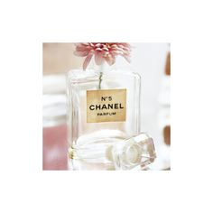 perfume_ihearthome   Zooomr Photo Sharing ❤ liked on Polyvore featuring pictures, backgrounds, icons, photos, pics and fillers