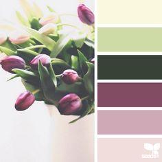 {tonalità tulipano}