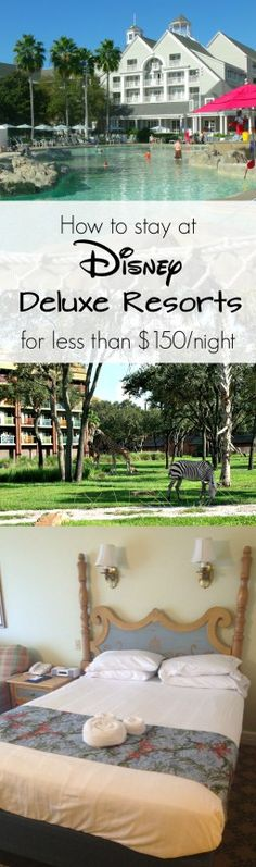 How to rent DVC points to stay at Deluxe Resorts for up to 80% off of Disney's…