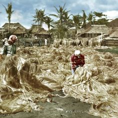 51 Old Colorized Photos Reveal The Fascinating Filipino Life Between 1900 - 1960 Philippines Culture, Manila Philippines, University Of Michigan Library, State University, Bataan Death March, Cheerleading Pyramids, Filipino Fashion, Filipina Girls, Normal School
