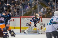 15 Best San Diego Gulls Hockey Game Images In 2016 Hockey Games