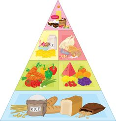 Illustration about An illustration of the food pyramid. Illustration of rice, food, sketch - 9046056 Food Icon Png, Food Icons, Forest Crafts, Group Meals, Food Groups, Food Clipart, Animal Worksheets, Fruit Illustration, Food Pyramid