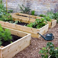 10 Rules for Organic Gardening - Gardening - Mother Earth Living