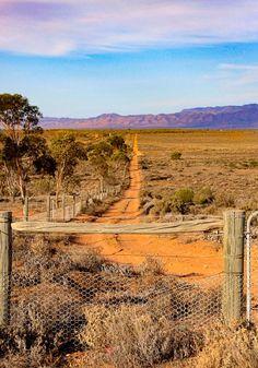 Outback track (South Australia) by Georgie Sharp