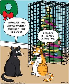 Super PAWSOME that Scott Metzger Cartoons created this unique CAM design fur the holidays! Get your paws on this exclusive merch right… Cat Jokes, Funny Animal Memes, Funny Cats, Funny Animals, Christmas Cat Memes, Holiday Meme, Christmas Animals, Crazy Cat Lady, Crazy Cats