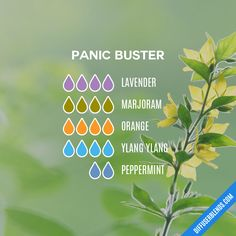 Panic Buster — Essential Oil Diffuser Blend Essential Oil Recipies, Essential Oil Scents, Essential Oil Diffuser Blends, Essential Oil Uses, Doterra Essential Oils, Young Living Essential Oils, Healing Oils, Room Scents, Diffuser Recipes
