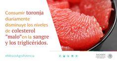"""Consumir toronja diariamente disminuye los niveles de colesterol """"malo"""" en la sangre y los triglicéridos. SAGARPA SAGARPAMX #MéxicoAgroPotencia"""