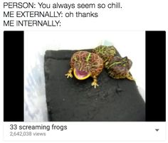 Super Funny Quotes Hilarious So True Guys 66 Ideas Screaming Frog, 4 Panel Life, Funny Jokes, Hilarious, Human Condition, It Goes On, Thats The Way, I Can Relate, Denial