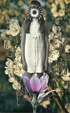 Grow by floralanatomy, via Flickr
