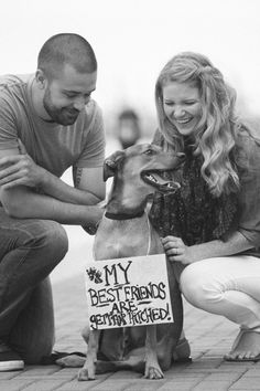 © Beth T Photography | Handsome dog holding Save the Date sign