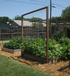 Raised Bed Trellis- great idea for a garden! We would like to have a garden like this one!