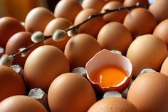 Huevo: menos colesterol y más vitamina D http://www.dondedijehuevodigodagu.com/post/51140561809/huevo-menos-colesterol-mas-vitamina-d