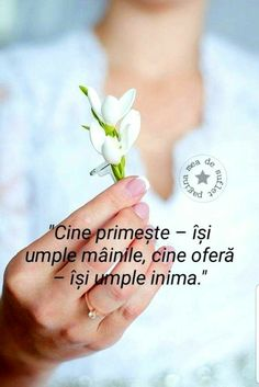Optimism, Good Morning, Positive Things, Positivity, Quotes, Characters, Buen Dia, Quotations, Bonjour