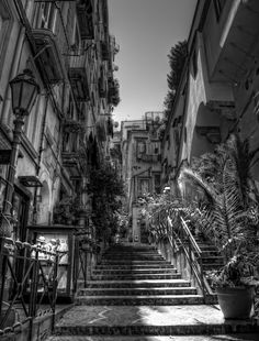 a little street in the middle of via chiaia, naples. title ispiration by blueanto Featured: [link] Copyright © chem-graph. My image. Napoli: Via Chiaia Elena Ferrante, My Images, Novels, Middle, Street, Travel, Life, Vintage, Italia
