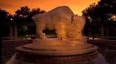 West Texas sunset at the buffalo fountain. West Texas A&m, Texas Sunset, Chamber Of Commerce, Alma Mater, Inevitable, College Life, Mount Rushmore, Fountain, Buffalo
