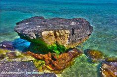 Iran,Coral Coast -Kish Island