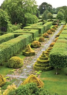 The thyme walk at Highgrove Garden is an inspiration. The air is filled with the scent of thyme. The path is lined by clipped yew--each one cared for by a different gardener who is allowed to mold it into any shape they wish. Garden Paths, Herb Garden, Garden Landscaping, Roses Garden, Formal Gardens, Outdoor Gardens, Highgrove Garden, Parks, Famous Gardens