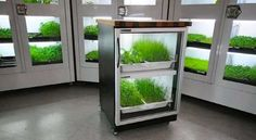 The Urban Cultivator Makes Growing Greens Year-Round Simple #homedecor trendhunter.com