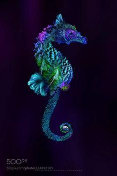 sea life - sea life photography - sea life underwater - sea life artwork - sea life watercolor sea l Underwater Animals, Underwater Sea, Underwater Creatures, Ocean Creatures, Beautiful Sea Creatures, Animals Beautiful, Animals Tattoo, Sea Dragon, Beautiful Fish
