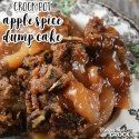 http://www.recipesthatcrock.com/crock-pot-apple-spice-dump-cake/