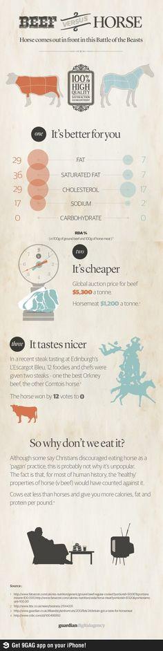 20 Intriguing Horse Meat Consumption Statistics