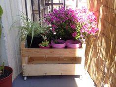 Jardinera hecha con cajas de fruta recicladas