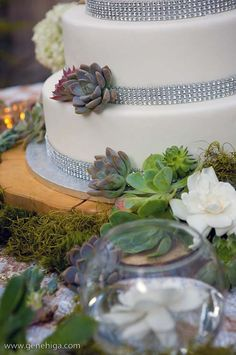 Succulents and gardenias surround the simple, chic cake.