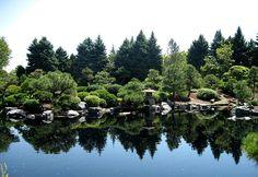 Japanese Gardens Reflection.. Denver Botanic Garden, Colorado
