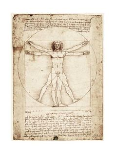"Trademark Fine Art ""The Proportions of the Human Figure"" by Leonardo da Vinci Painting Print on Rolled Wrapped Canvas Size: H x W x D Da Vinci Vitruvian Man, Silverpoint, Jesus Art, Kunst Poster, Wassily Kandinsky, Cool Posters, Claude Monet, Art Reproductions, Klimt"