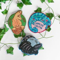 Image of Reptile Club Iron-On Patches Les Reptiles, Cute Reptiles, Reptiles And Amphibians, Pin And Patches, Iron On Patches, Reptile Room, Reptile Pets, Terrarium Reptile, Colorful Snakes