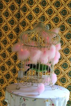 Bird Cage with a mad parrot !