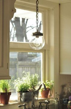 Image of Over Kitchen Sink Lighting Fixtures with Chain Pendant Light Kit Above Metal Indoor Planters Toward Pull Out Spray Head and Plastic Soap Dispenser