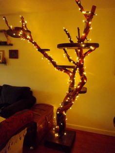 Cat Tree. DIY. Branch. Homemade for Cats. Our cat would try to chew the fairy lights - not such a good idea!