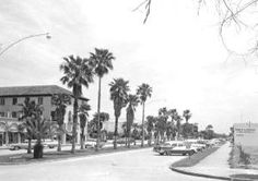 Venice Florida! | Venice Florida History