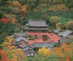 Beautiful Places, Beautiful Pictures, Places To See, Temple, Scenery, Korea, Castle, Japan, Traditional