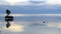 Day 13 - November 21, 2010. Baclayon coastline.