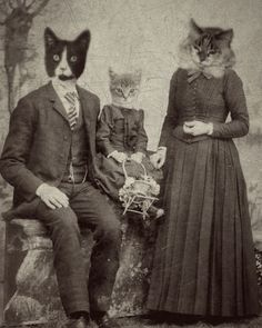 Vendor Shout Out: Caricatures and Unique Gifts by J.Bird Antique Pet Photos, combining vintage photographs with pictures of animals to create anthropomorphic images. http://www.etsy.com/shop/jbirdistheword?section_id=12049940