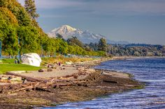 White Rock and Mt. Mount Rainier, Places Ive Been, Coast, Canada, Bays, Photo And Video, Mountains, Rock, World