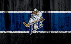 Download wallpapers Kootenay Ice, 4k, grunge, WHL, hockey, art, Canada, logo, stone texture, Western Hockey League