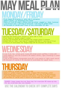 meal plan and workouts