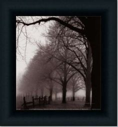 Black And White Morning By Harold Silverman Art Print Poster Picture Framed Decor 10X10