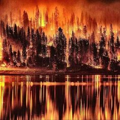 62 Best Pacific Northwest Fires images