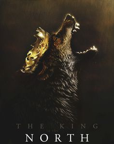 Robb Stark, King in the North